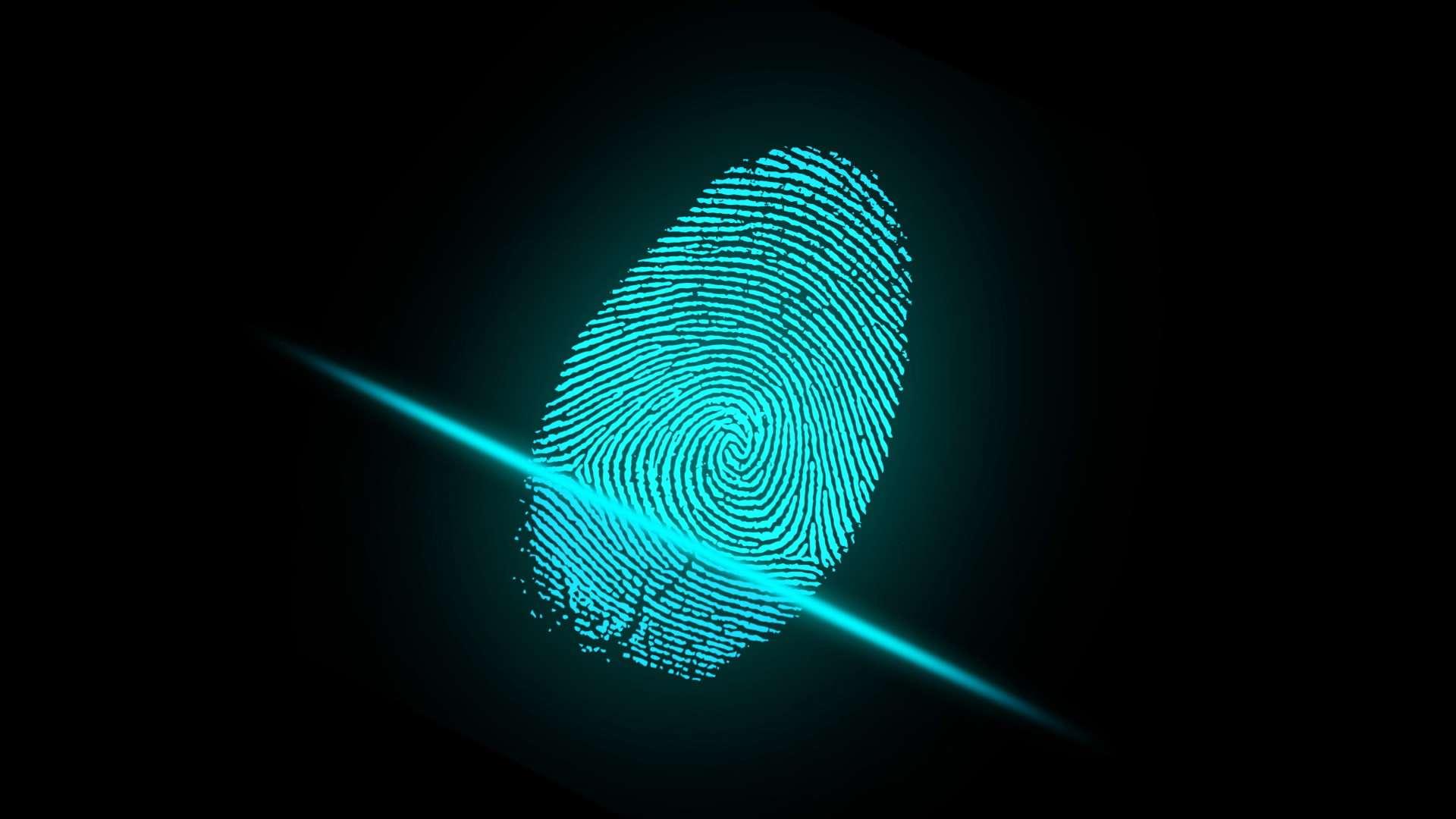Fingerprint Türöffner: Test & Empfehlungen (10/20)